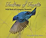 img - for Feathers of Fayette Wild Birds of Lexington, Kentucky book / textbook / text book