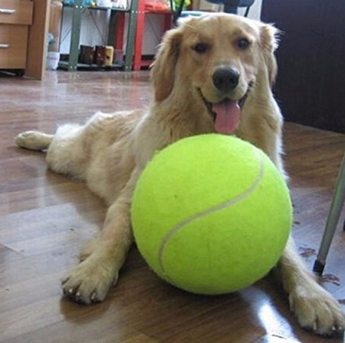 9.5inch Giant Big Inflate Tennis Ball 24CM Giant Big Inflate Tennis Ball Pet Dog Cat Kids Toy Signature Mega Jumbo Tennis Ball