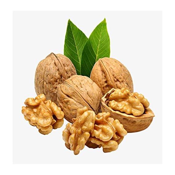Ancy Inshell Fresh Paper Walnuts, Premium Quality Dry Fruits, Jumbo Size 500g (2x250g)