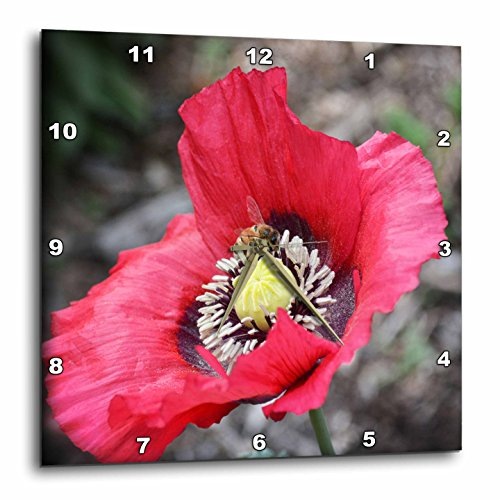 Poppy Nectar - 3D Rose Home Is Where the Nectar Is a Photo of a Bee Inside a Poppy Flower Wall Clock, 15