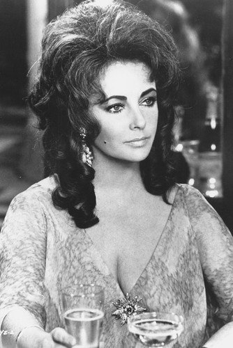 Elizabeth Taylor Zee and Co. Busty classic Movie 24x36 Poster Silverscreen