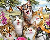 Craftymint Large Premium Full Drill DIY 5D Diamond Painting Kits for Adults and Kids - 16''x20'' Adorable Cat Design - Relax and Paint with Diamonds - Art Tool Kit Includes All Accessories