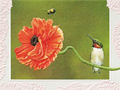 pumpernickel-press-boxed-blank-notecards-bee-line