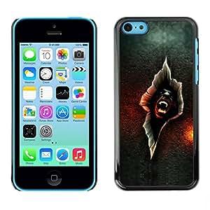 Paccase / SLIM PC / Aliminium Casa Carcasa Funda Case Cover para - Vampire Crack - Apple Iphone 5C