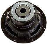 Rockford Fosgate R2D4-10 Prime 4-Ohm DVC