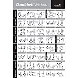 Dumbbell Workout Exercise Poster - NOW LAMINATED