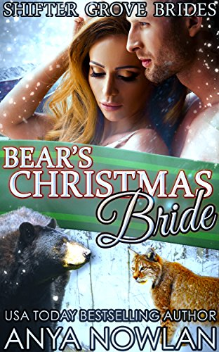Bears Christmas Bride Shifter Brides ebook