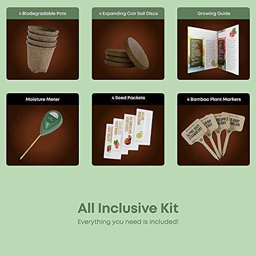 Kit de Cultivo de Frutas Exóticas: Todo Incluido para Cultivar ...