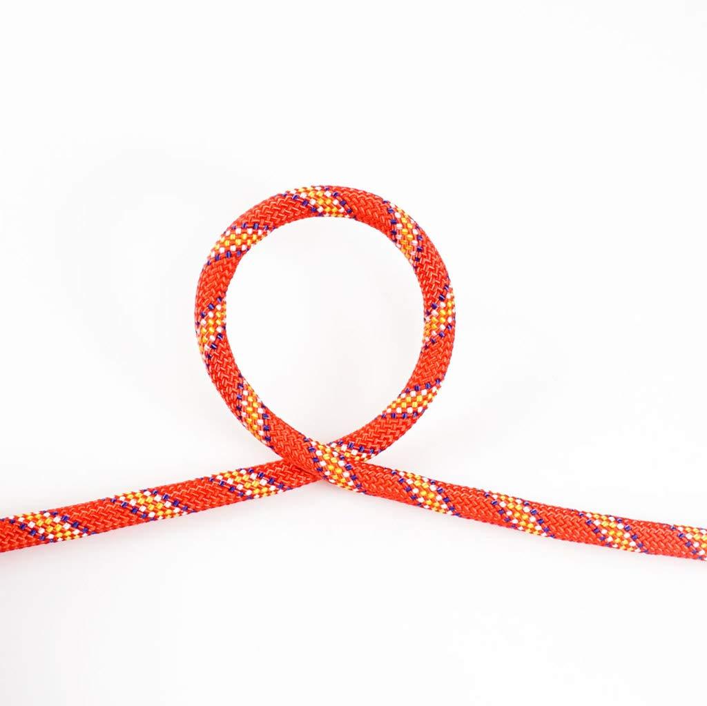 Rouge QARYYQ Corde d'escalade Descente de Corde Diamètre de Corde d'escalade 8mm Cordes (Couleur   rouge, Taille   20M) 100M