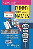 img - for Funny Thing About Names: An Entertaining Look at Naming in America by Jim Wegryn (2005-03-11) book / textbook / text book