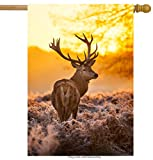 ShineSnow Sunset Autumn Fall Forest Deer House Flag 28″ x 40″ Double Sided, Polyester Summer Safari Wildlife Animal Cervus Elaphus Welcome Yard Garden Flag Banners for Patio Lawn Home Outdoor Decor