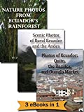 Ecuador Photo Gallery Bundle: Nature Photos from Ecuador's Rainforest + Photos of Ecuador: Quito, the Basilica, and Otavalo Market + Scenic Photos of Rural Ecuador and the Andes