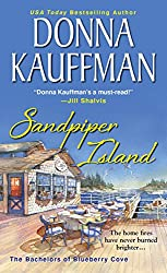 Sandpiper Island (Bachelors of Blueberry Cove Book 3)