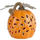 National Tree Pumpkin Décor, 6 Inch, Orange