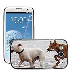Cas Coq Case Cover // M00421764 Perros Bastones Jugar Bite Romp Beach // Samsung Galaxy S3 S III SIII i9300
