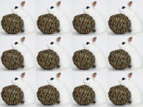 Marshall Pet Peters Grass - 5