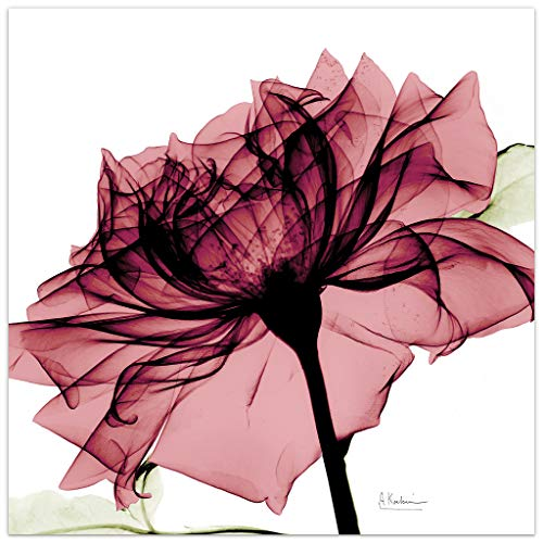 Empire Art Direct Chianti Rose I Flower Wall Art - Pink rose wall art