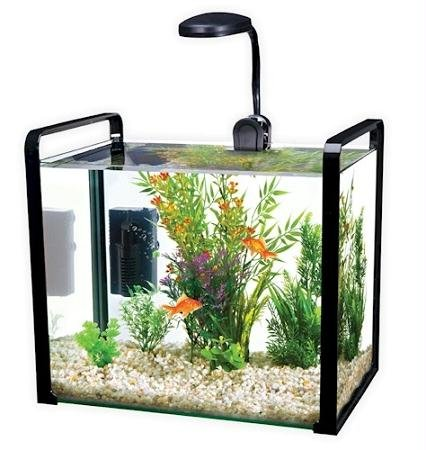 Pen-Plax WW102KG Parallel Designer Glass Aquarium Includes Led Light with Safety Lid, 8 gallon, Grey (Designer Fish Tank)
