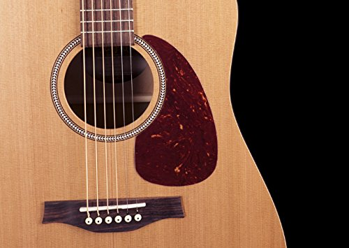 best-review-of-seagull-s6-original-acoustic-guitar-2