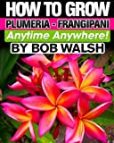 How To Grow Plumeria - Frangipani Anytime Anywhere