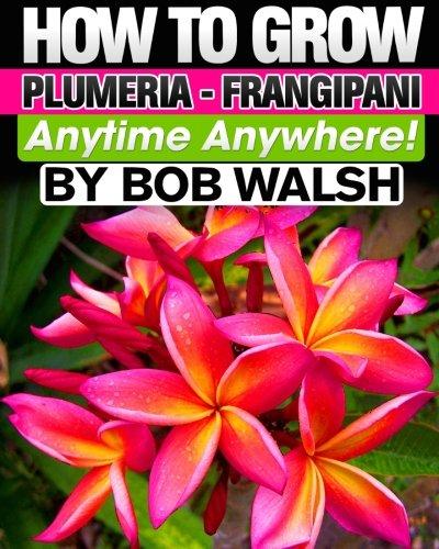 How To Grow Plumeria - Frangipani Anytime Anywhere