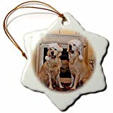 3dRose Sandy Mertens Christmas Animals - Two Golden Retrievers in Santa Hats by the Fireplace - 3 inch Snowflake Porcelain Ornament (orn_269522_1)