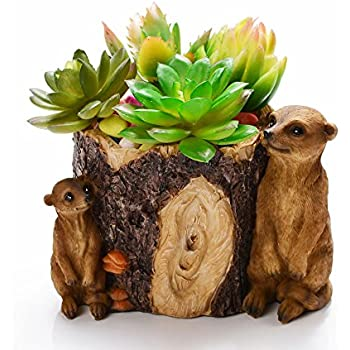 KONDISCO Plants Pot,Creative Succulents Plants Pot Hanging Garden Design with Sweet House for Decoration and Gift.