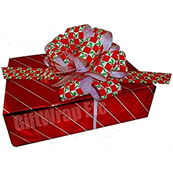 """Red Green Christmas Holly Mistletoe Leaves Gift Wrap Pull Bows - 5"""" Wide, Set of 10, Ribbons for Xmas Presents"""