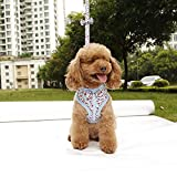 Best Kurgo Pet Toys - Cibeat Dog Harnesses, Cute Floral Pattern Bowknot Dog Review