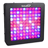Global Star® Gs-(fbs) 100x6w(600w) Horticulture Full Spectrum LED Grow Light for Indoor Plant Growing,one Switch for Leaf,another for Flowering For Sale