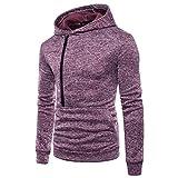 iLXHD Men's Zipper Long Sleeve Hooded Sweatshirt Outwear Blouse Jacket(Purple,3XL)