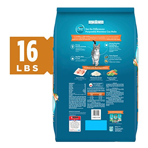 Purina ONE Tender Selects Dry Cat Food
