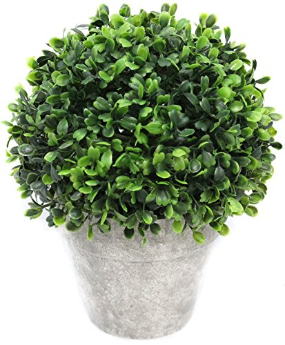 Artificial Boxwood Topiary Ball Table Top Plant With Decorative Pot 8 inches Tall Realistic Indoor Faux Decor ()