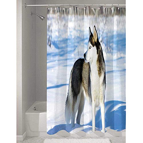 - Alaskan Malamute Affordable Polyester Shower Curtain Chukchi Husky Breed Dog on Snow Covered Rural Winter Landscape Easy to Maintain and Durable W55 x L72 Inch Black White Light Blue