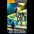 Stone Cold (The Alex Stone Thriller Series Book 2)