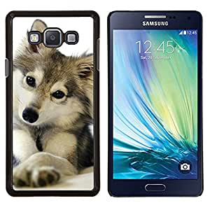 Dragon Case - FOR Samsung Galaxy A7 - cute puppy wolf snow winter pet canine - Caja protectora de pl??stico duro de la cubierta Dise?¡Ào Slim Fit
