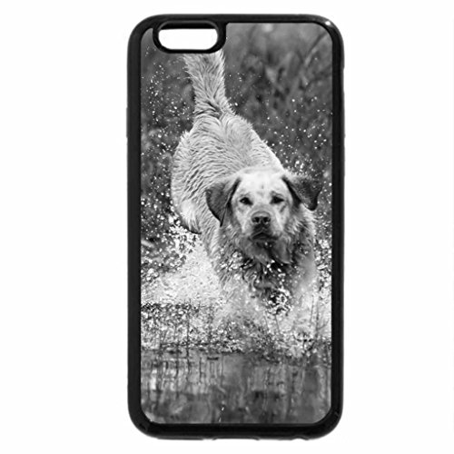 iPhone 6S Plus Case, iPhone 6 Plus Case (Black & White) - Yellow_labrador_retriever