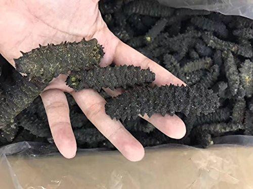 Tomox thorn screw, sea cucumber, all thorns dry, vinegar flavor 20-30pc 500g by Tomox