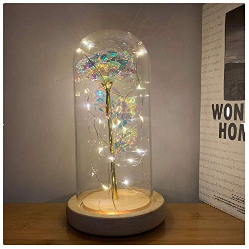 Vivila Romantic Illuminate Colorful Galaxy Rose Flower in Glass Dome with Wooden Base Home Decor Best Gifts for Her