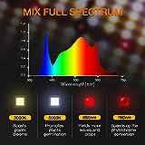 SPIDER FARMER SF-4000 LED Grow Light 5'x5' Coverage