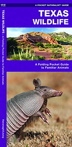 Texas Wildlife: A Folding Pocket Guide to Familiar Animals (Wildlife and Nature -