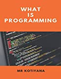 img - for What Is Programming? book / textbook / text book