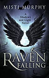 Raven Falling (Shadow and Lights) (Volume 1)