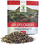 Search : California Wildflower Mixture - Bulk 1 Ounce Packet - Over 7,000 Native Seeds - Open Pollinated and Non GMO