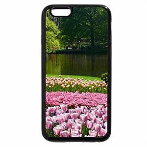 iPhone 6S Plus Case, iPhone 6 Plus Case, Walk in Keukenhof Garden