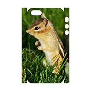 DIYCASESTORE Best Diy Case for iPhone 5,5S 3D Bumper Plastic,Customized case Cute Animal Chipmunk WE174929