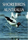 img - for Shorebirds of Australia book / textbook / text book