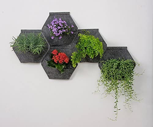 Jardín vertical. Pack de 4 Sacos Orgánico Mh (30x30x15cm) + Manual ...