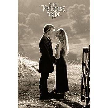 24x36 Poster Print Princess Bride Classic Film Sheet