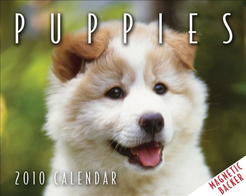 Puppies: 2010 Mini Day-to-Day Calendar Dog 2010 Mini Calendar